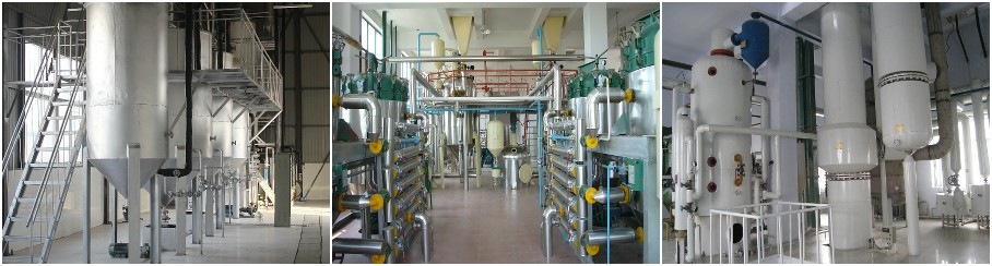 Complete Palm Oil Milling and Refining Plant