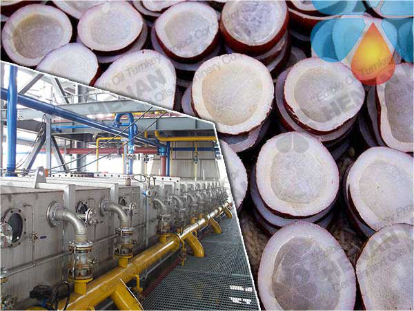 Coconut Oil Extraction Production Line/Copra Oil Extraction Machine